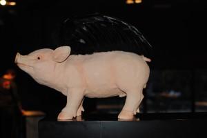 Cerdo volador David Muñoz