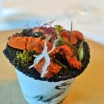 Dos Cielos: Experiencia gastronómica completa