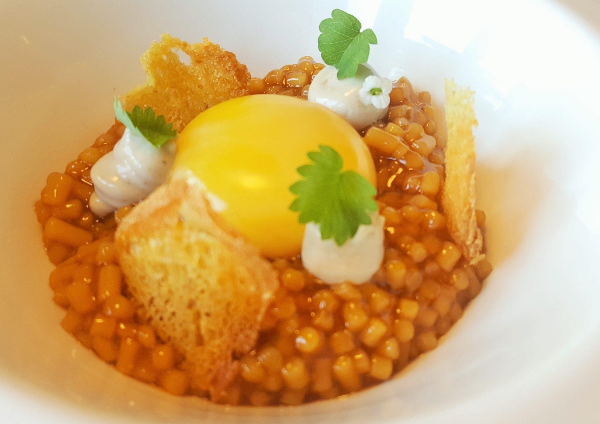 Huevo y guiso de trigo en salsa de pimientos