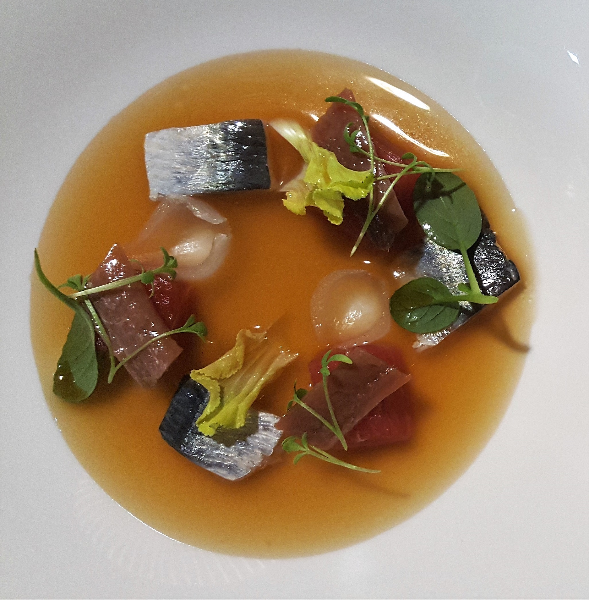 Sardina, atún, verduras el Retiroo